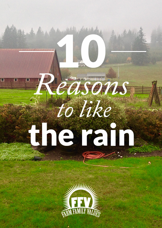 10 Reasons To Like The Rain